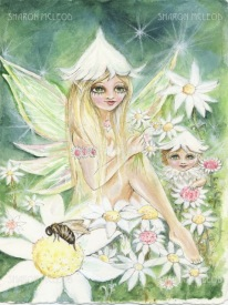 Flannel Flower Faery