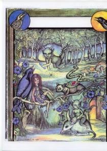 Rainforest Fantasy